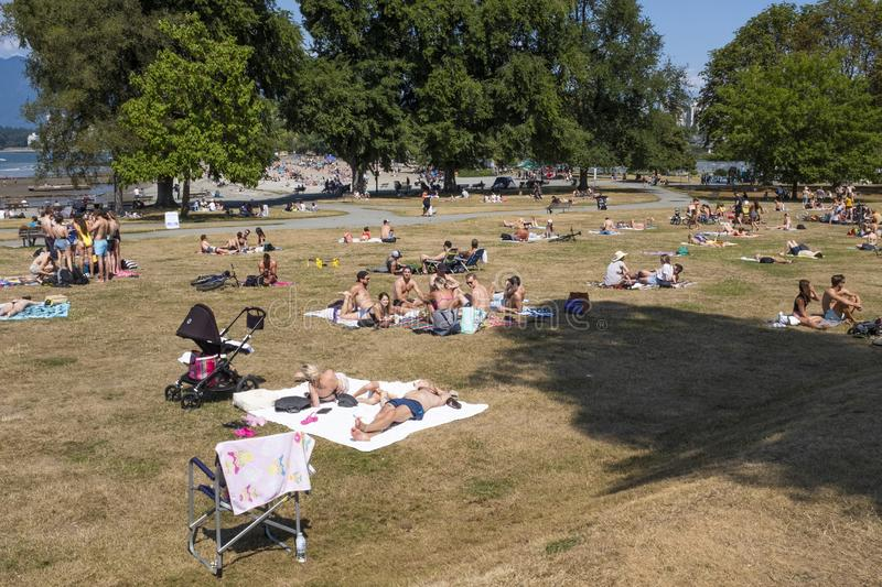 Sun bathers on the grass at Kitsilano beach or `Kits` beach in Vancouver. Sun bathers soak up the sun on the grassed area royalty free stock image