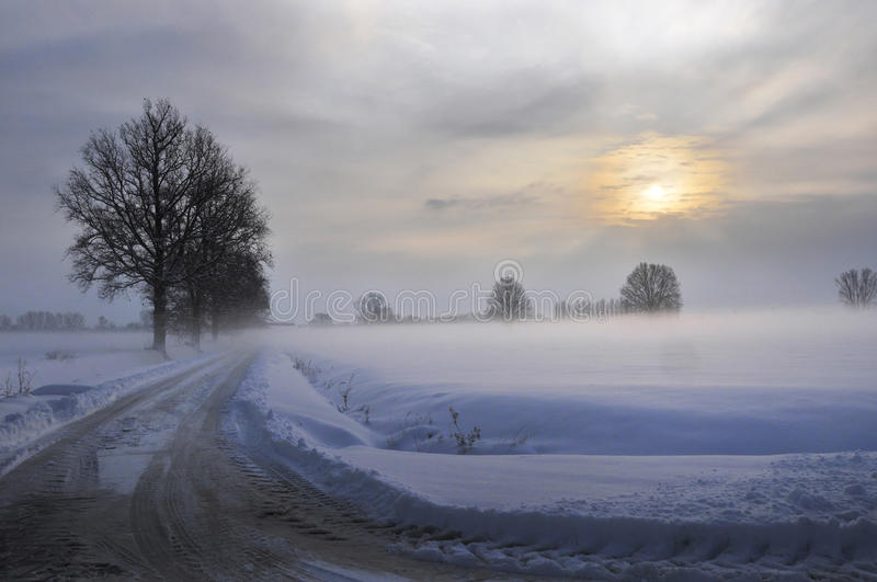 The sun after the blizzard. The sun is coming after the snowfall stock photo