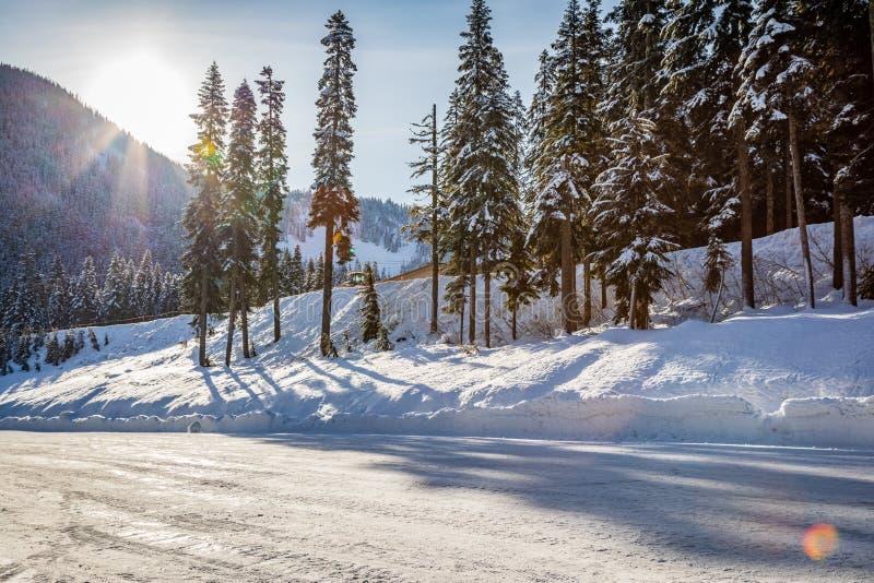 Sun brille par derrière une montagne à côté des arbres derrière une route emballée par neige dure photographie stock