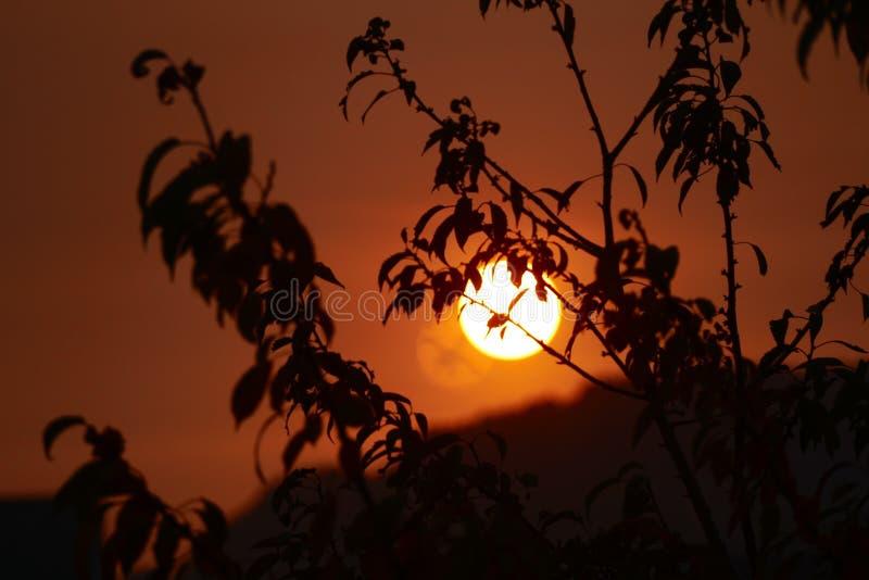 Sun, céu, nascer do sol, luz fotografia de stock