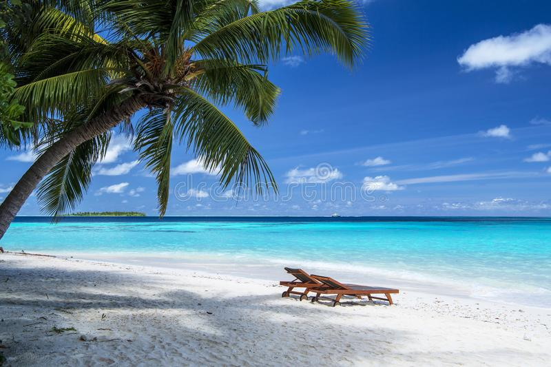 Sun chairs on beach in Maldives in winter royalty free stock images