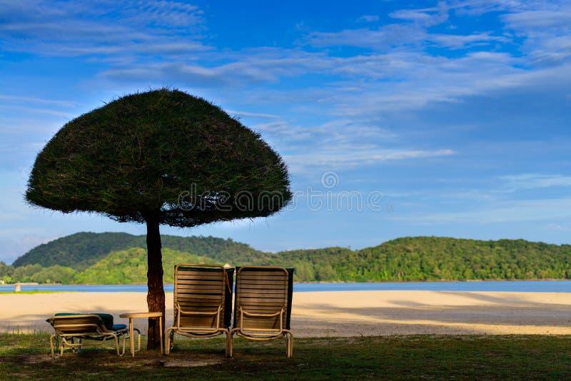 Sun chairs and umbrella royalty free stock photos
