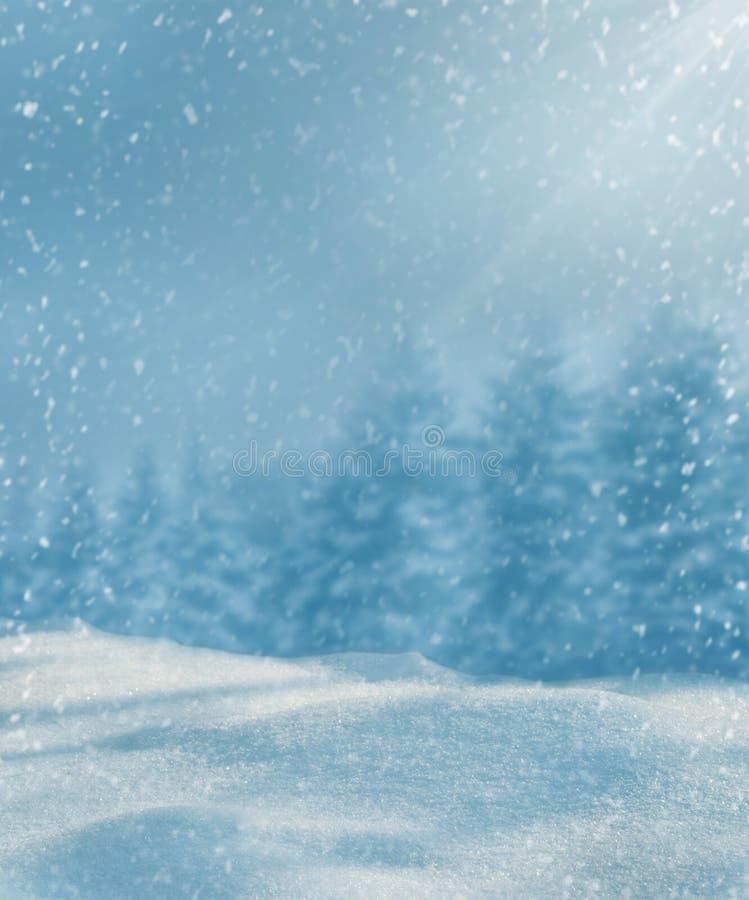 Sun che brilla sulla neve Priorità bassa di inverno Giorno gelido freddo fotografia stock