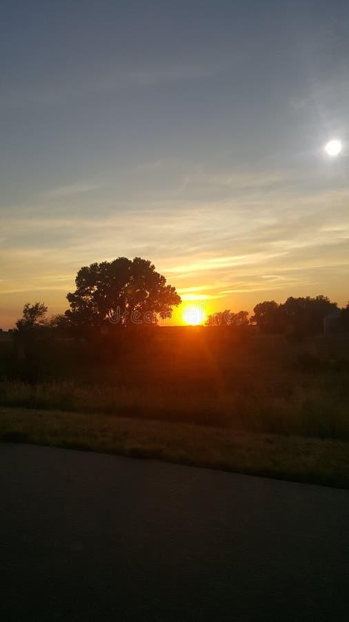 Sun che dà una occhiata da parte a parte fotografie stock