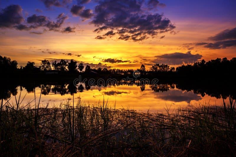 Sun che mette con gli alberi ed il cespuglio della siluetta intorno al grande stagno in rurale della Tailandia, colpo preso usand fotografia stock