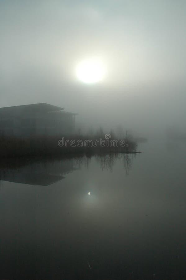 Sun che viene attraverso fotografie stock libere da diritti