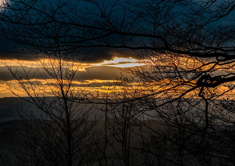 Sunset between branches royalty free stock photo