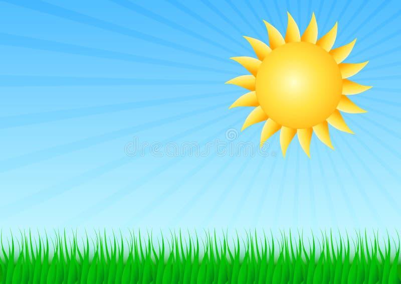Sun con erba fotografia stock