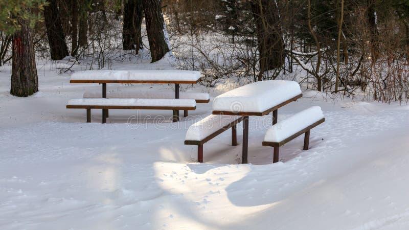 Sun, der auf den Picknickbänke und -tabelle bedeckt mit dichter Schneeschicht im Wald scheint stockfotografie