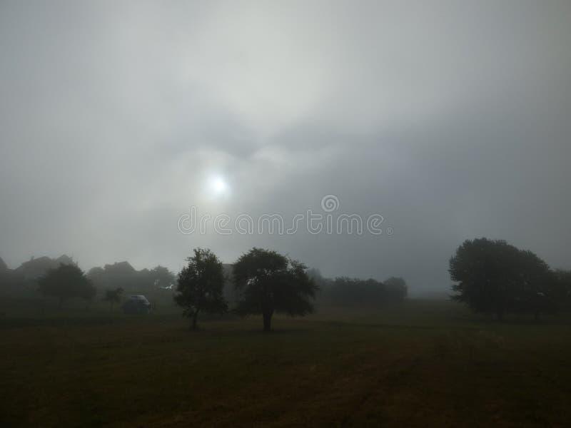 Sun, der durch den Nebel, Lager ` Seeblicke ` Stadt Plav, Montenegro scheint stockfotografie