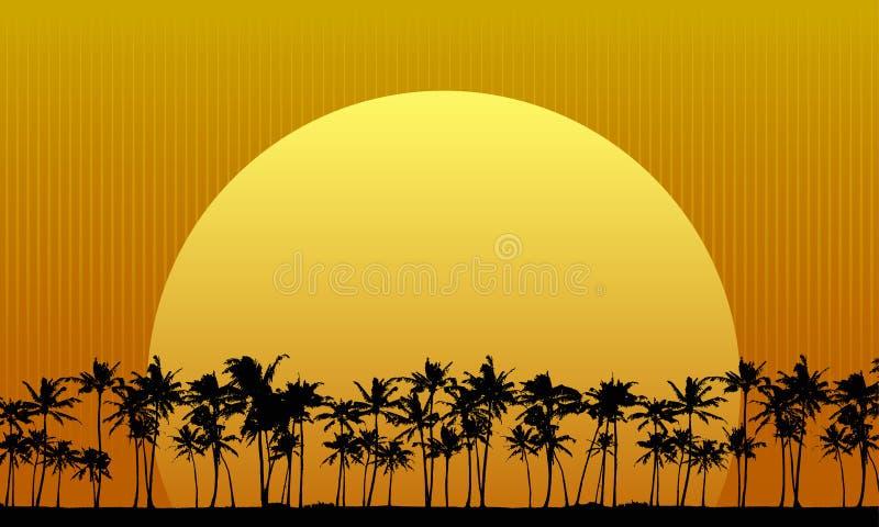 Sun derrière des palmiers illustration stock