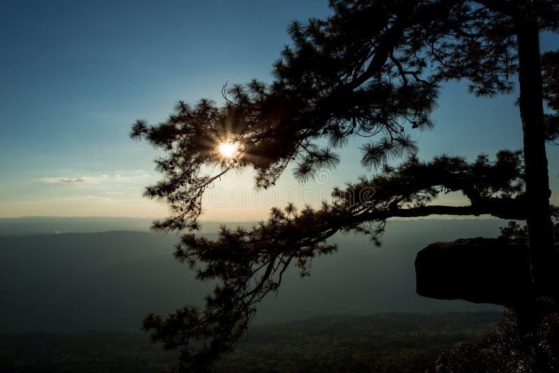 Sun di pomeriggio alla scogliera di Lomsak immagini stock libere da diritti