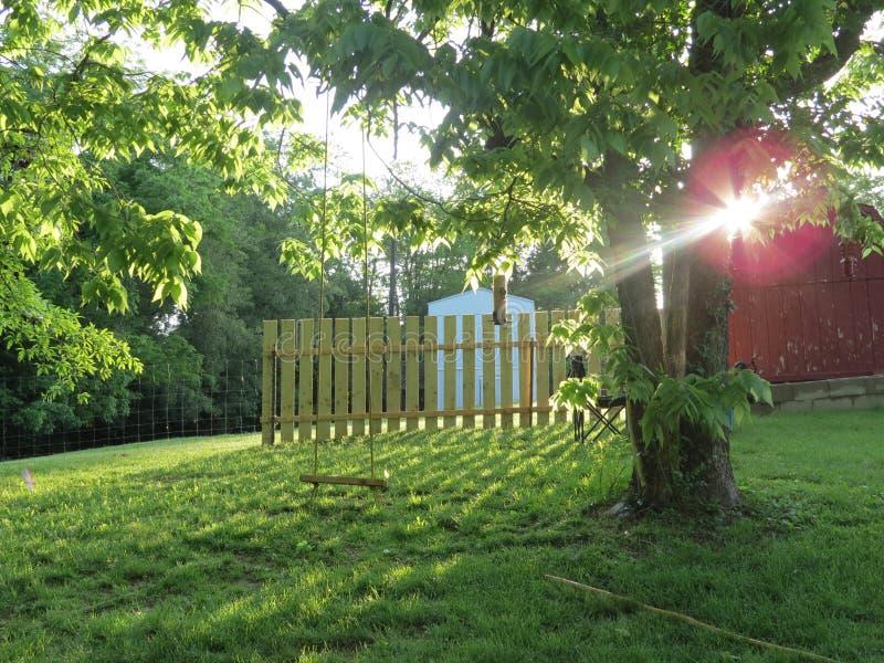 Sun di primo mattino fotografia stock libera da diritti