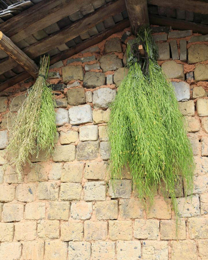 Sun-dried herbs under the eaves, adobe rgb stock image