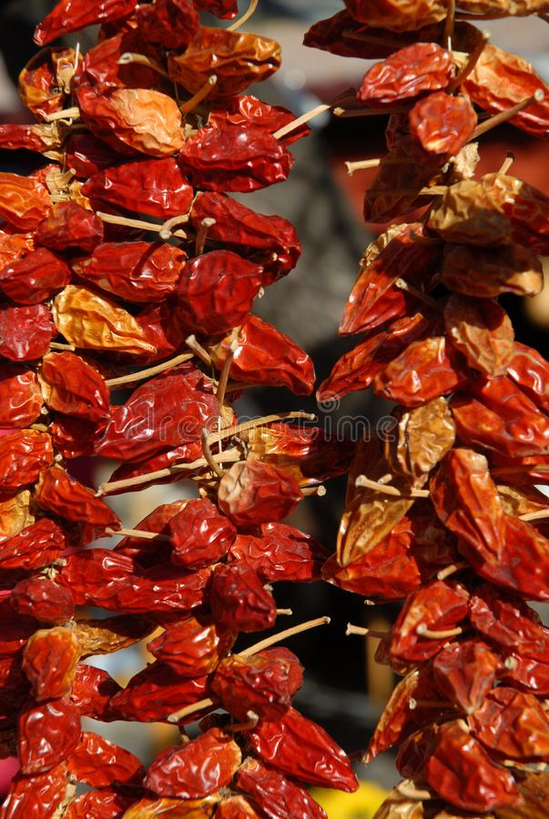 Sun-dried red chilli peppers hanging outside royalty free stock images