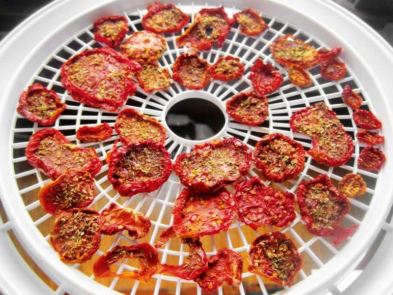 Sun dried tomatoes food dehydrator royalty free stock photography