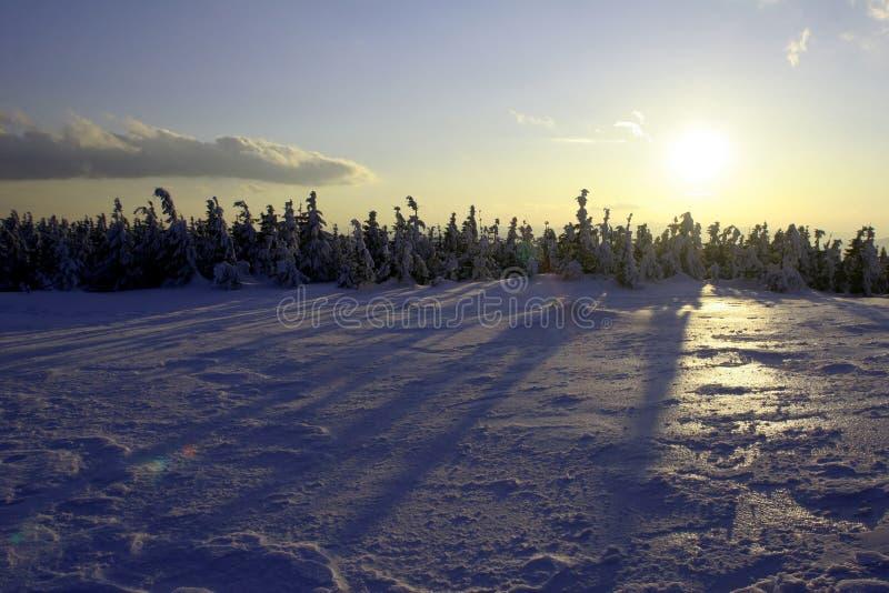 Sun e neve imagens de stock