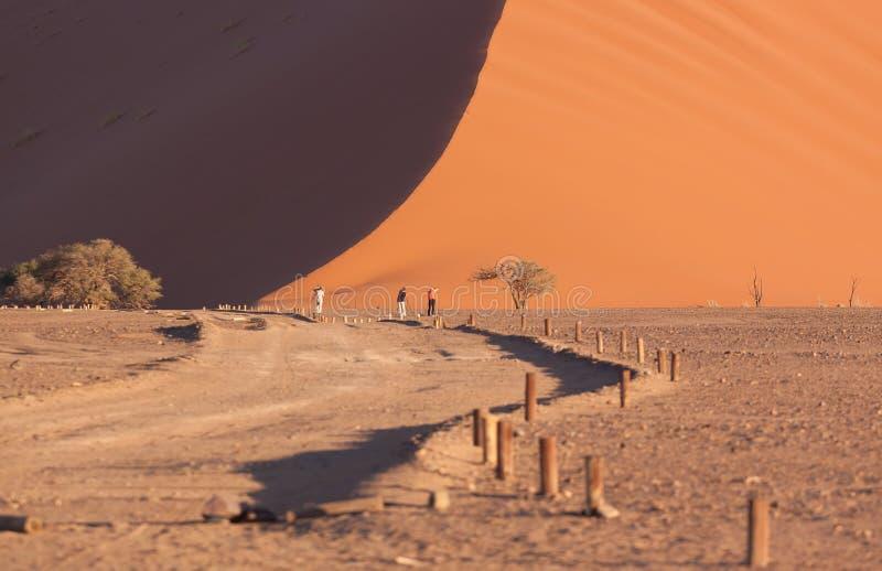 Sun e tiro da sombra da duna 45 em Namíbia imagem de stock
