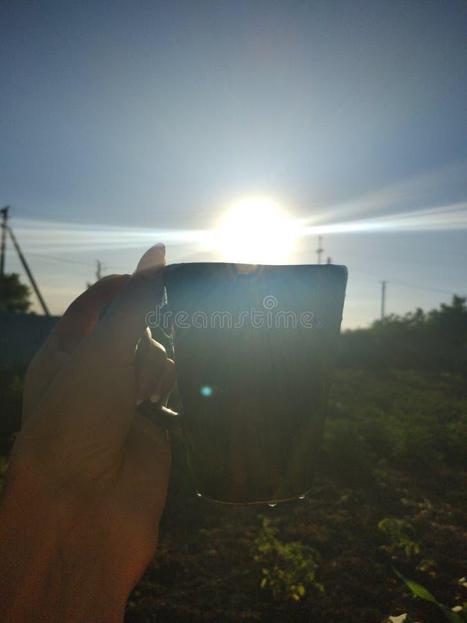 Sun in einer Schale lizenzfreie stockfotos