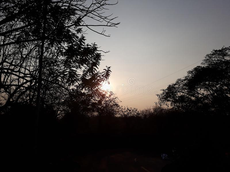 Sun a embrassé le matin photo libre de droits