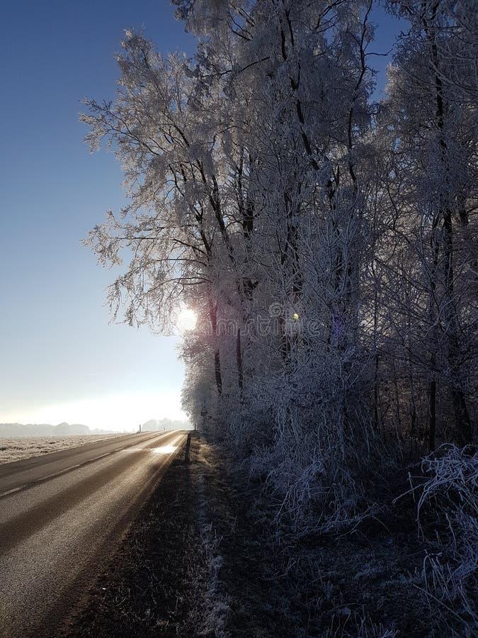 Sun et neige photo stock