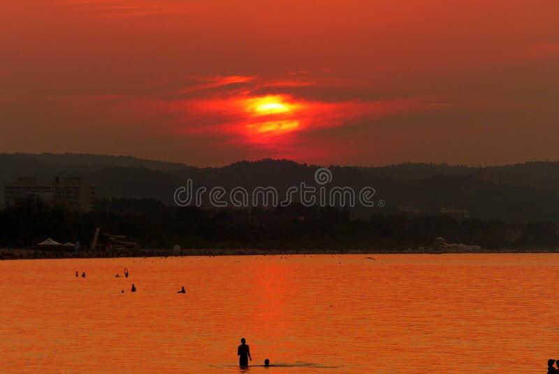 Sun fijó - vertical imagen de archivo