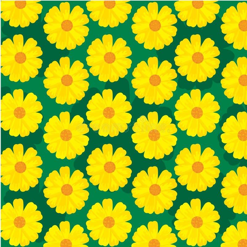 Sun flower for background illustration stock photo