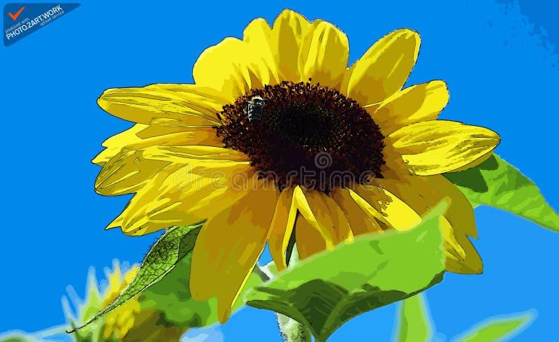 Sun Flower - Id: 16235-142812-2228 Free Public Domain Cc0 Image
