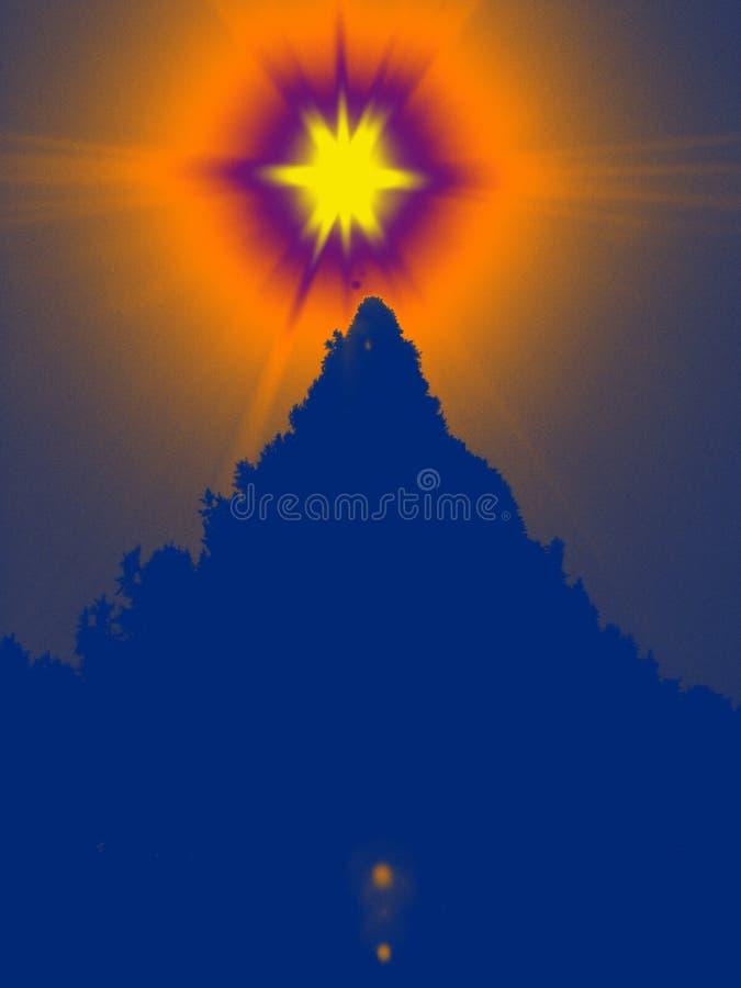 Sun with Fur Tree stock image