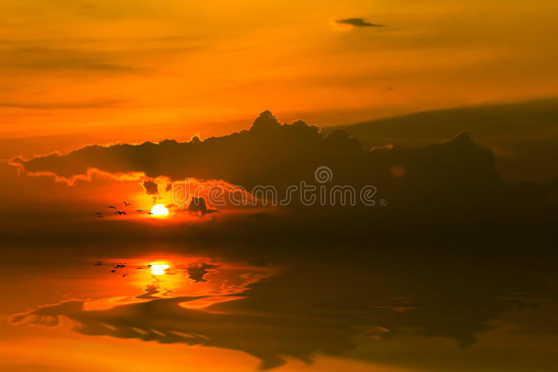 Sun goes down with flying bird. Sunset moment with reflection on sand and flying bird royalty free stock photos