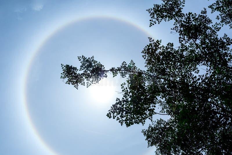 Sun halo phenomenon. Sun halo effect, sun ring in clear blue sky royalty free stock photo