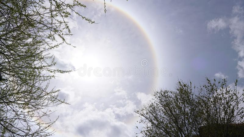Sun halo white some rock and tree branches royalty free stock images