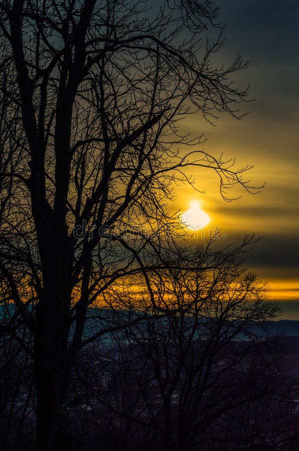 Sun on the horizont in city of Pakrac. With dark trees in winter royalty free stock photos
