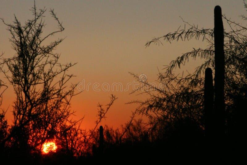Sun iść W dół fotografia royalty free