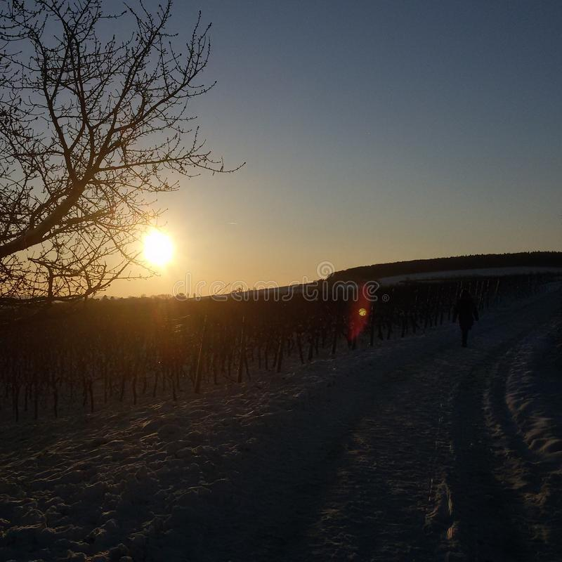 Sun i śnieg fotografia royalty free