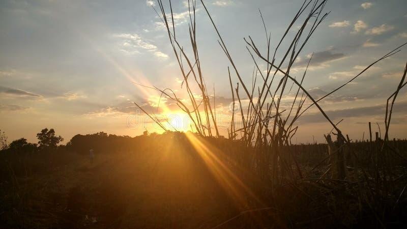 Sun i niebo obraz royalty free