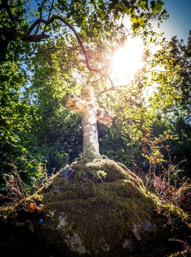 Sun illuminant une croix en pierre franciscaine avec un tre photographie stock libre de droits