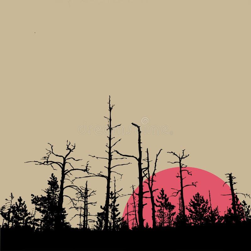 Sun im Holz vektor abbildung