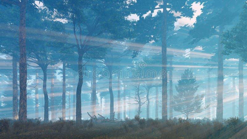 Sun irradia el brillo en bosque de niebla del pino ilustración del vector