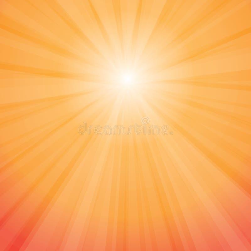 Sun irradia vector stock de ilustración