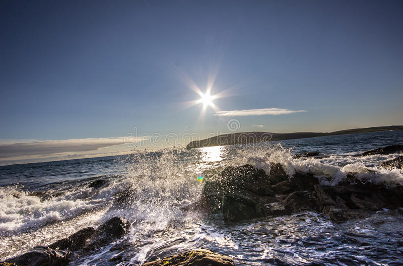 Sun kissed Surf. royalty free stock image