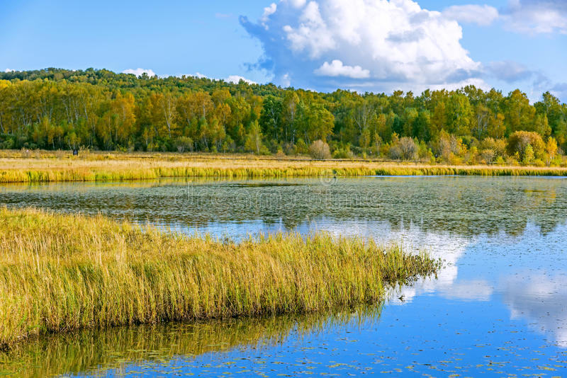 The Sun Lake autumn scenery royalty free stock image