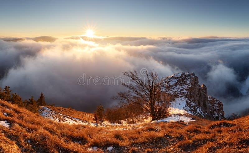Sun, landcape de montagne au-dessus des nuages, nature gentille photos libres de droits