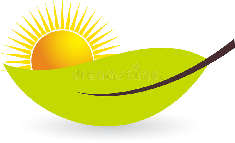 Sun leaf stock illustration