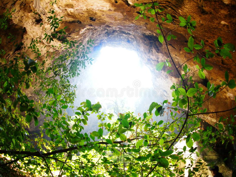 Sun light beam through cave hole crop view with green jungle tree stock images