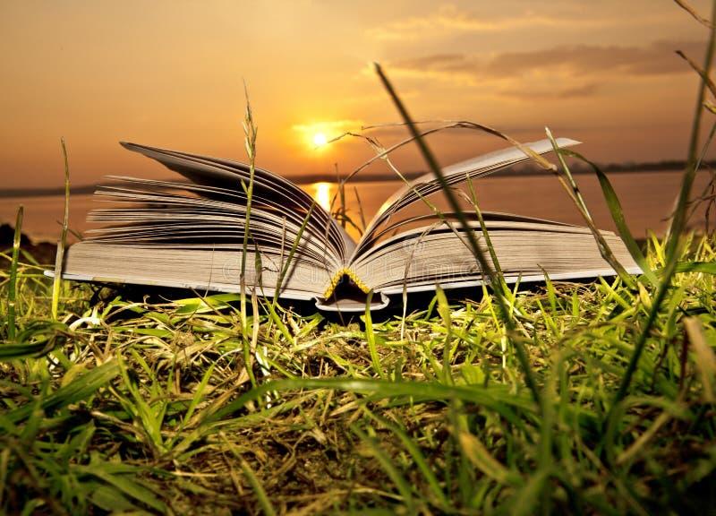 The sun magical books. Creative concept image of absorption of the sun magical books royalty free stock photos