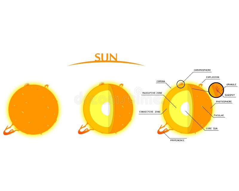Sun mergulha Clipart com Infographics ilustração do vetor