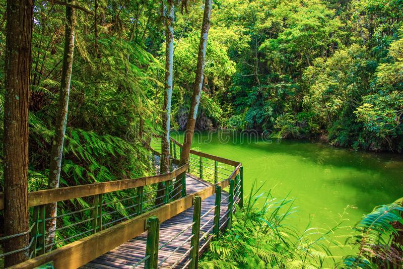 Sun Moon Lake of Taiwan. There are ten  beautiiful  Trails at Sun Moon Lake stock images