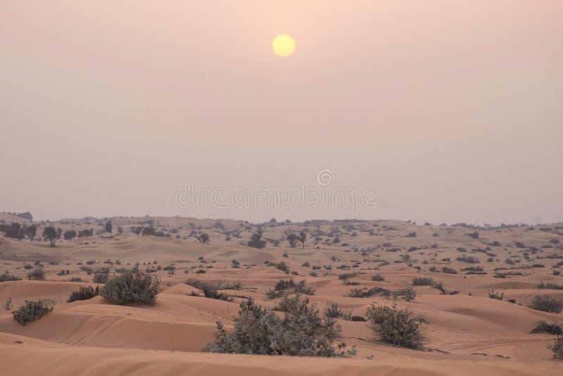 Sun nel cielo sopra il deserto, la sabbia e Bush raro, foschia immagini stock