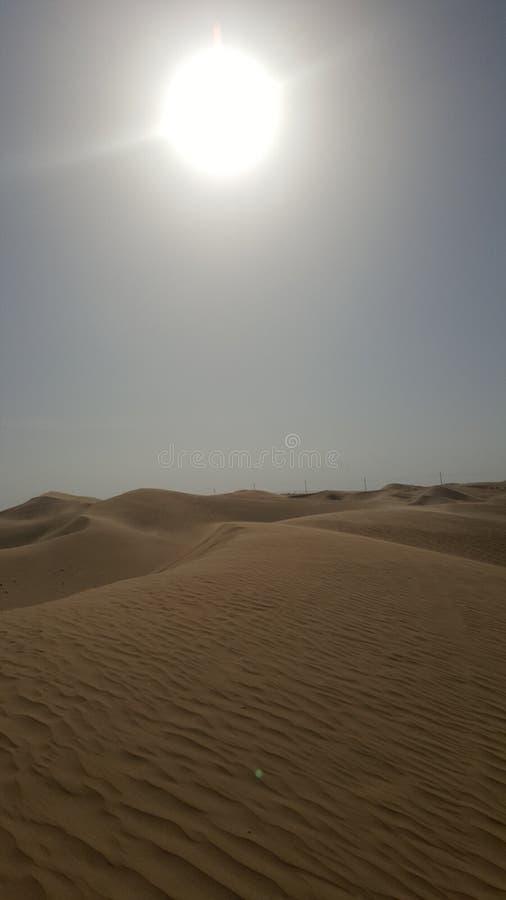 Sun no deserto imagem de stock
